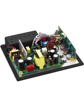 SAM-200D Digital Amplifier Module